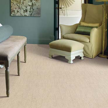 Caress Carpet by Shaw | Ledgewood, NJ
